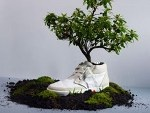 In Holland erschienene Bio-Sneaker