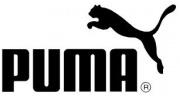 Puma wartet auf den Herbst