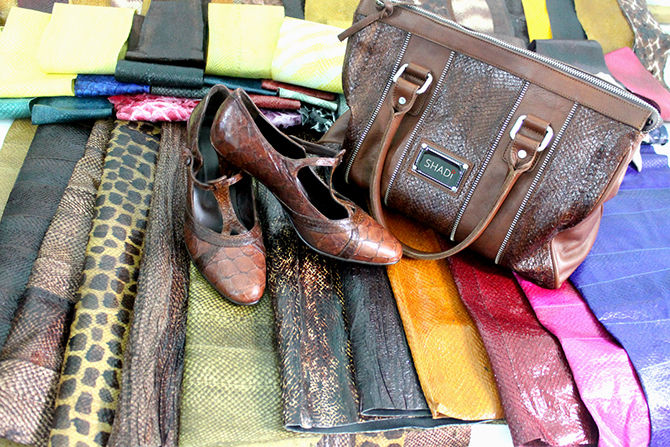 Shadi will sell fish leather shoes on the European market