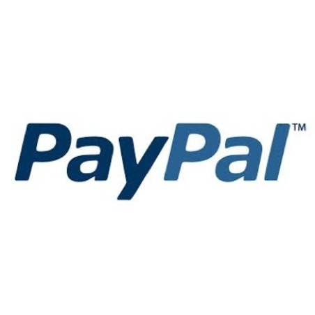 PayPal and Data Insight will discuss online shopping
