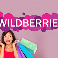 Wildberries entered the German market