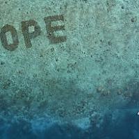 Lanciata la nuova tonalità del Pantone Color Institute per proteggere l'ecologia degli oceani
