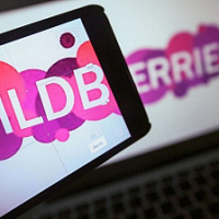 Wildberries notes the growth of purchases through mobile devices in Russia